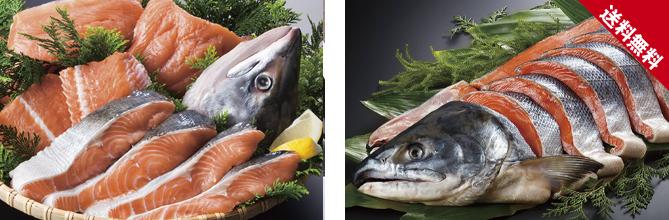 秋鮭,新巻鮭,時鮭
